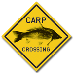 ed skillz-carpcrossing website link