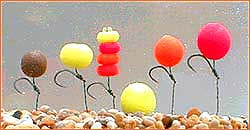 Assorted Popup Baits-Eternal Boilies