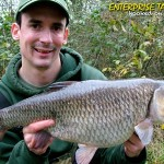 alan stagg 7lb+ chub
