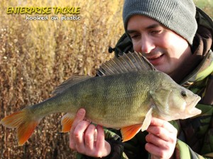 alan-stagg-3lb-8oz-perch