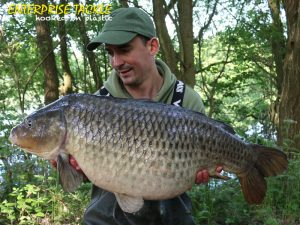 31lb 2oz Common