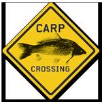 ed skillz-carpcrossing website link